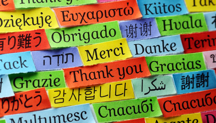 The phrase 'thank you' written in different languages on colourful notes